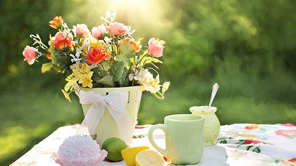 Mother's Day Tea at Martha's Herbary 5/13/18